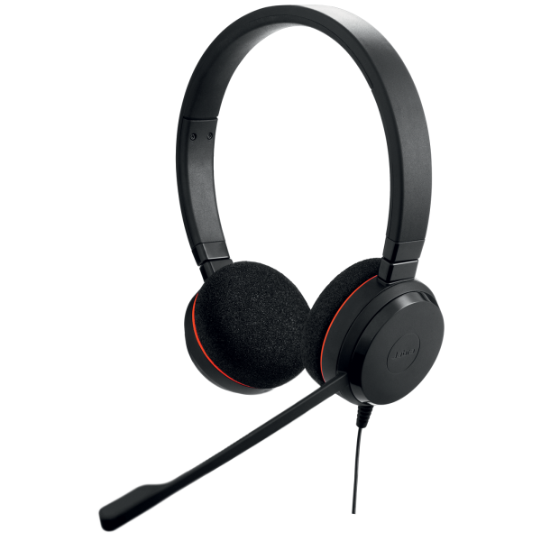 Jabra Evolve 20 Duo USB/QD